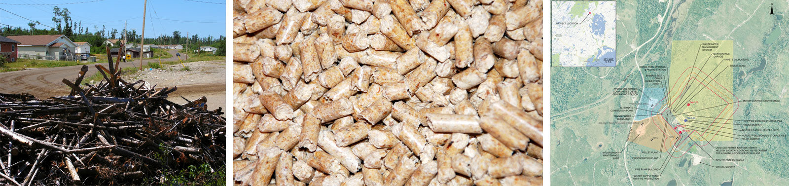 Biomass Cogeneration and Pellet Mill Project